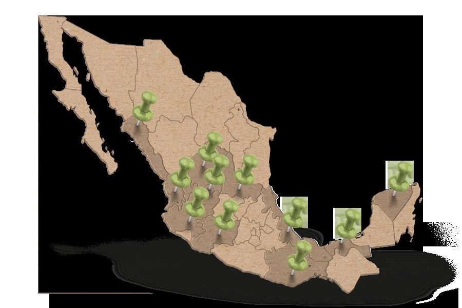 Presencia en 11 estados de la república mexicana